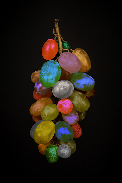 A Rainbow of Grapes