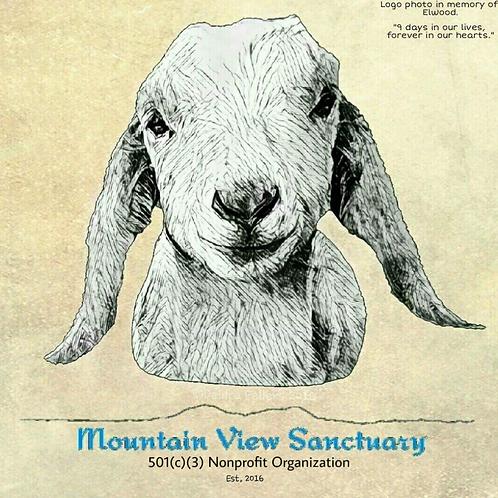 Mountain View Sanctuary