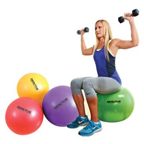*Core Stability Balls 55cm SKU# 1335880