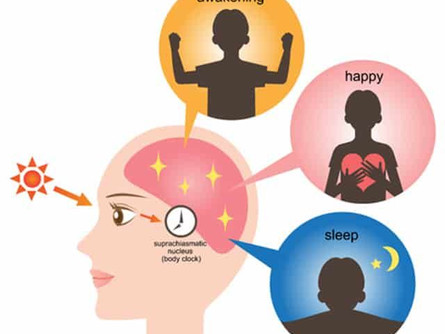 Links between Cancer, Metabolism, and Circadian Rhythm