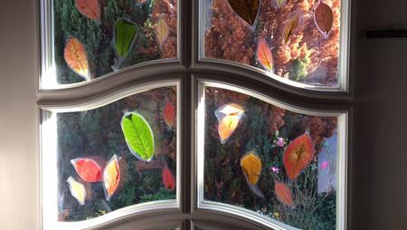 Fensterbilder – Blätter laminieren - basteln mit Kindern
