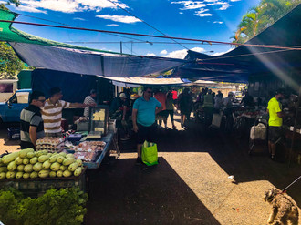 """Feria"" Grocery shopping at Parque Bosque"