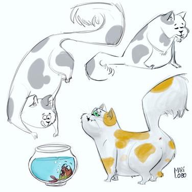 Fat kitty
