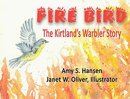 Fire bird front cover.jpg