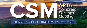 csm logo.png