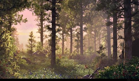 adam-lacharite-pineforest-beauty.jpg