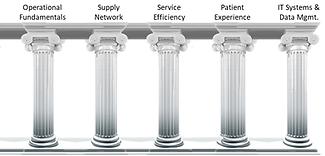 HCSC Pillars.png