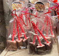Packaged Chocolate Dipped Marshmallows