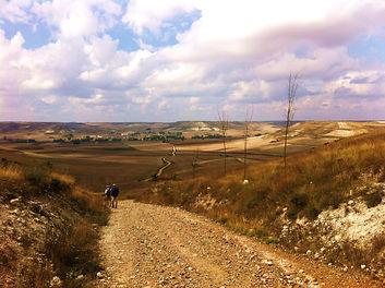 Compostelle, Camino frances, la meseta immense