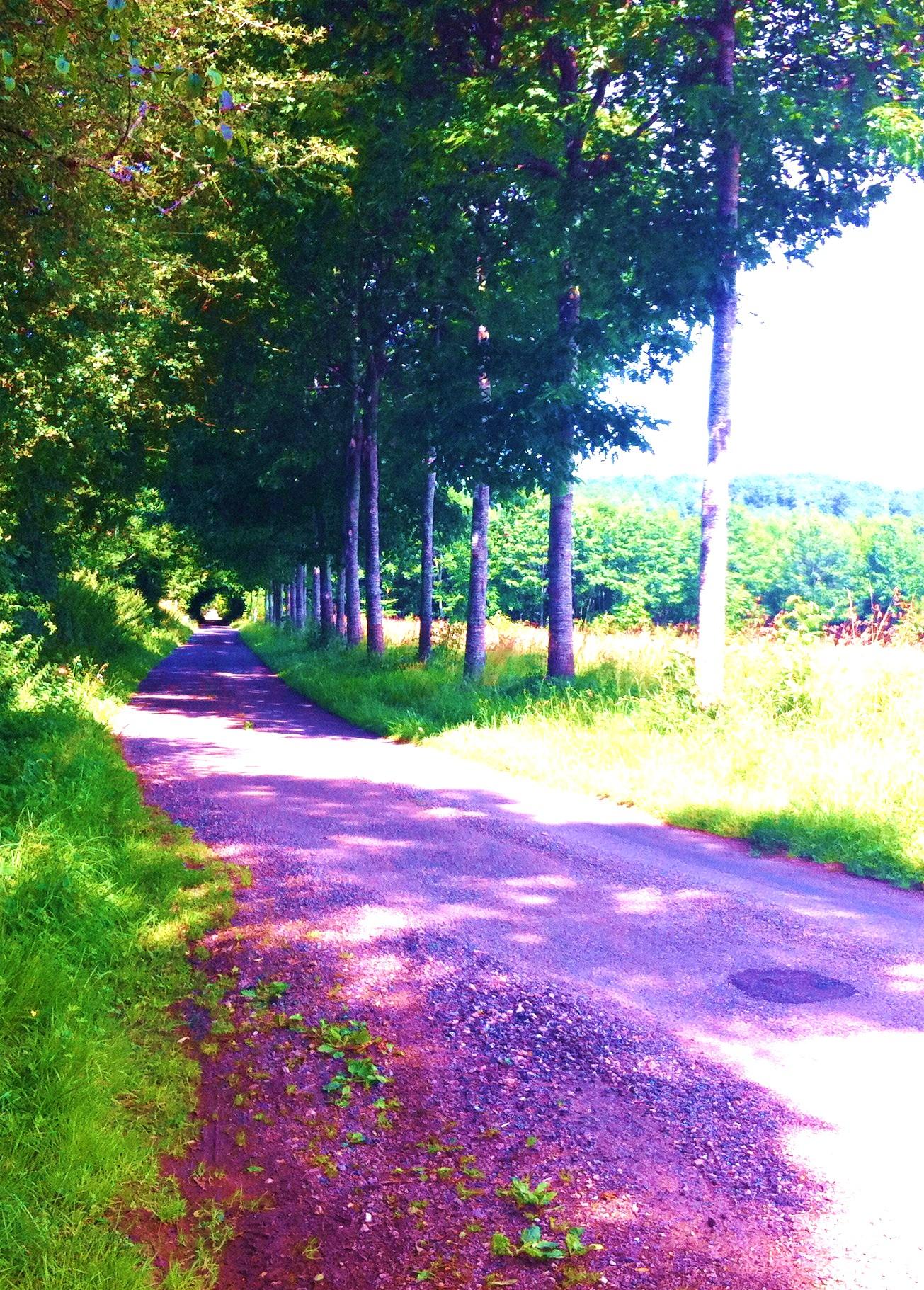 Le chemin du piémont