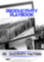Productivity Playbook_v2.png