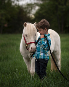Pony-Session-Unicorn-Mini-Portrait-3.jpg