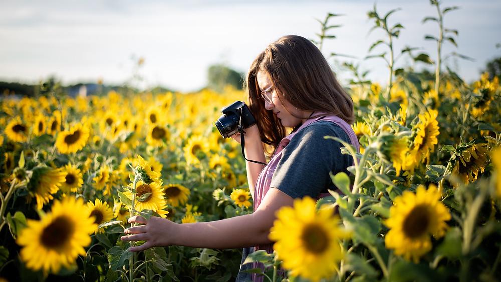 Girl photographing sunflowers at Nelson Produce in Valley, Nebraska
