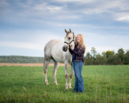 gray-quarter-horse-rider-pasture.jpg
