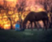 Horse-Girl-EMDukatPhotography-Nebraska_3