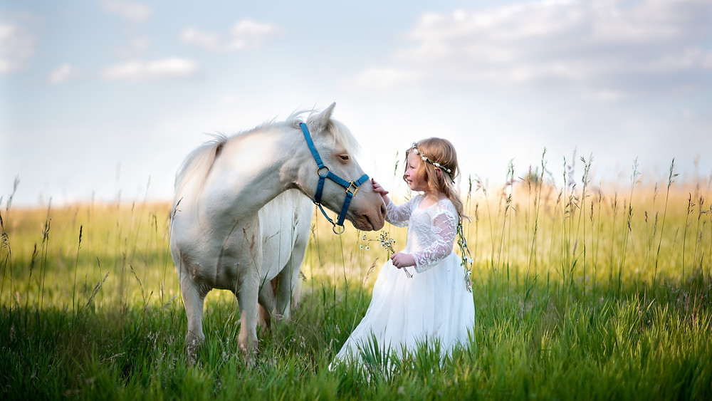 pretty girl with pony in a field in Gretna, Nebraska
