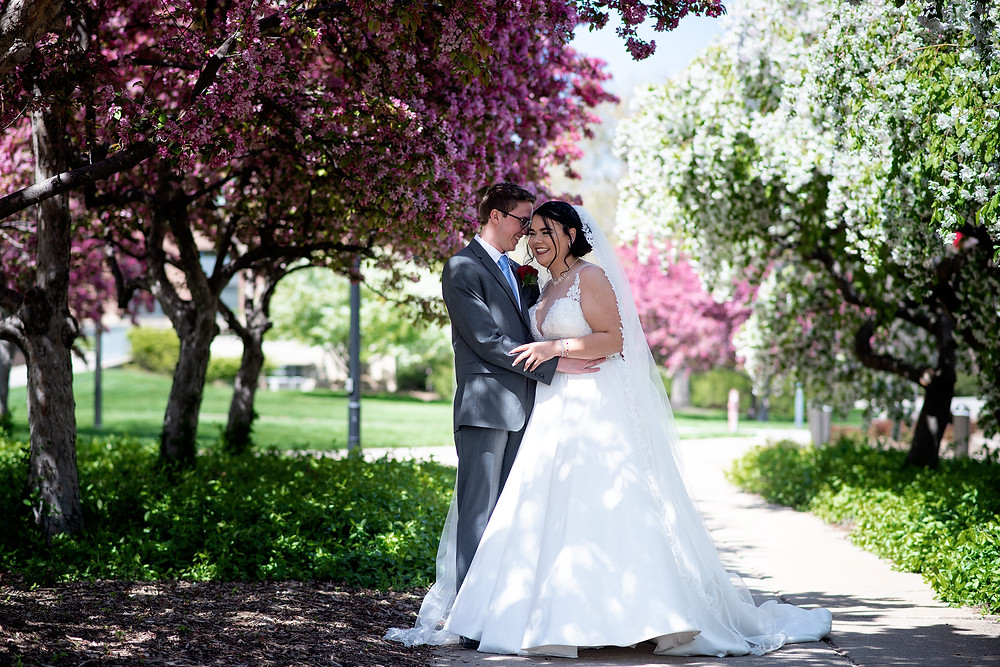 Bride & groom snuggle together under a blooming tree during Spring for their couple's portraits on the UNL campus in Lincoln, Ne.