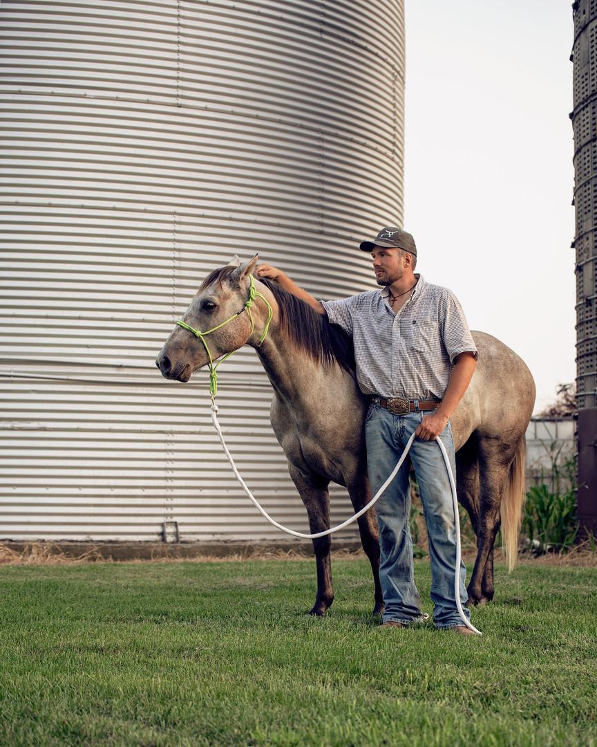 guy-gelding-horse-equine-photographer