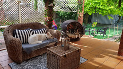 Meira and Lyka lazing on our patio