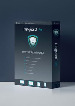 Netguard Logo Blue