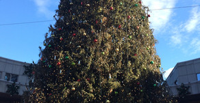 #8   Die Geschichte des Weihnachtsbaumes - The Story of the Christmas Tree