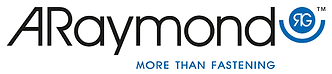 Logo ARAYMOND.png