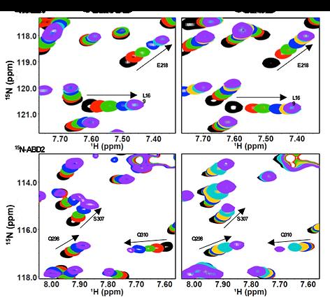 Techniques_NMR_2.png
