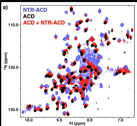 Techniques_NMR.png
