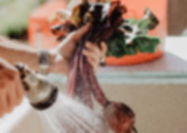 beets-farm-produce-farmer-1034825.jpg