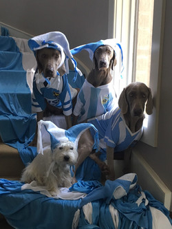 Alba rooting for Argentina