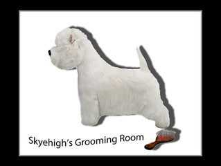 Welcome to Skyehigh's Grooming Room