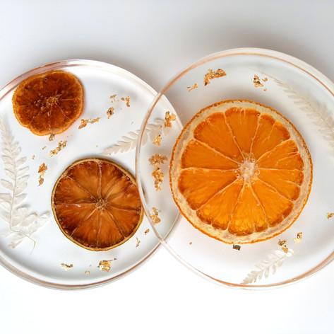 """4"""" citrus coasters"""