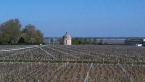Latour cancels 2012 release