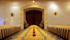 Bordeaux 2019 vintage: Clues on what to expect