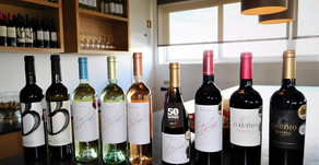 Vegan Vinho - Home delivery service now available in UK. Award-Winning Wines of Portugal