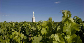 BORDEAUX EN PRIMEUR 2019: ON…OFF…ON… - Drinks Business