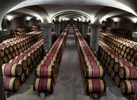 Five wines that have beaten the FTSE 100 - and the five that will