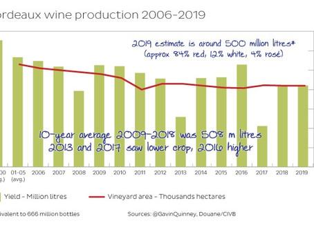 Bordeaux 2019 - a fine crop at the top