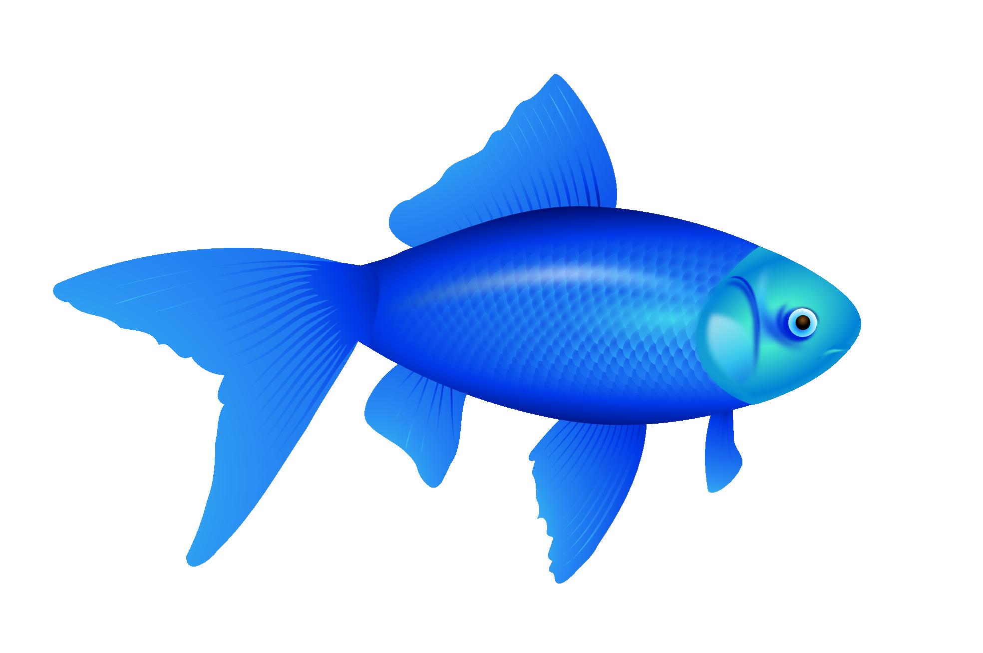 blue-fish-png-image-18
