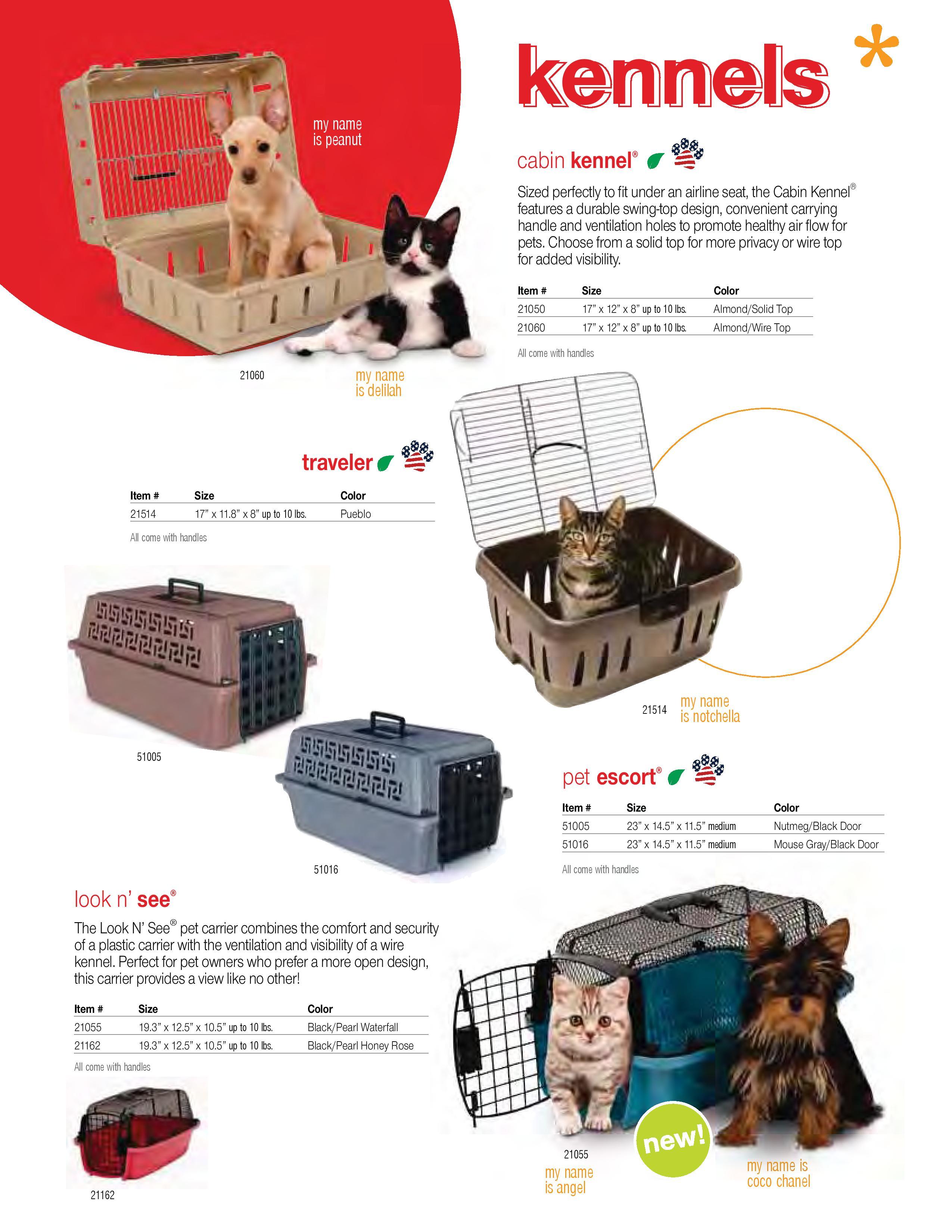 Emirates Animals Export  (16)