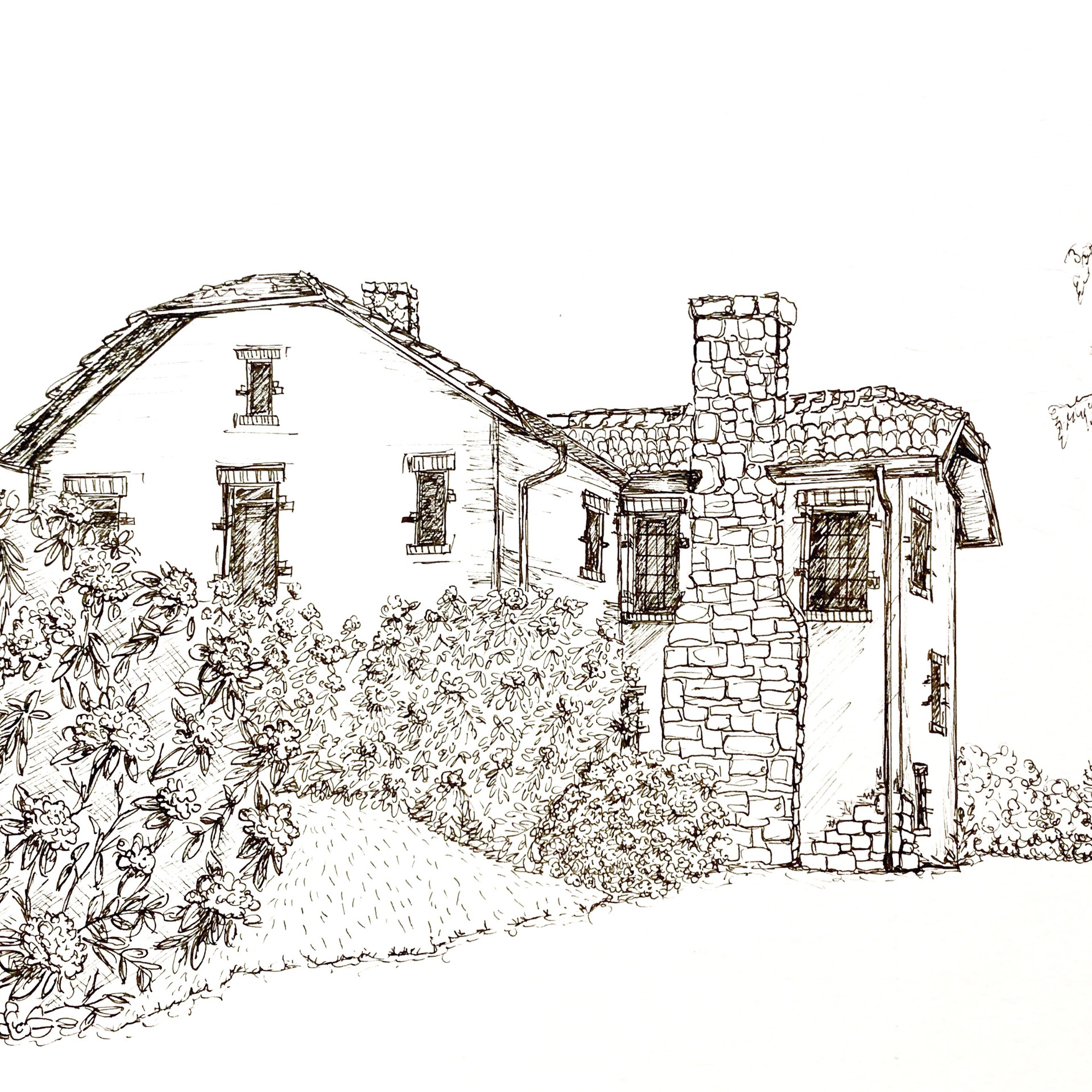 """8x10"""" House Sketches"""