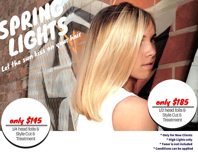 SPRINGLIGHTS1.jpg