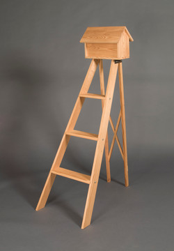 Step Ladder with house #1