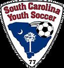 scys logo.png