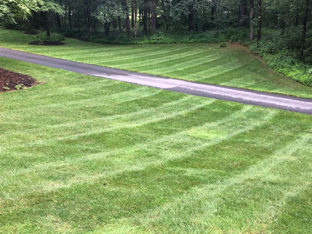 high quality mowing