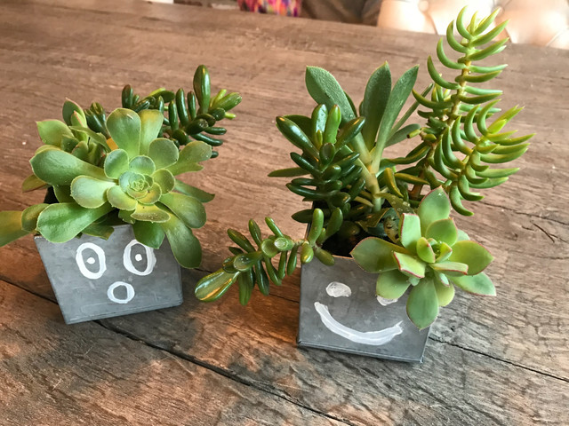 Cutest Emoji Planters