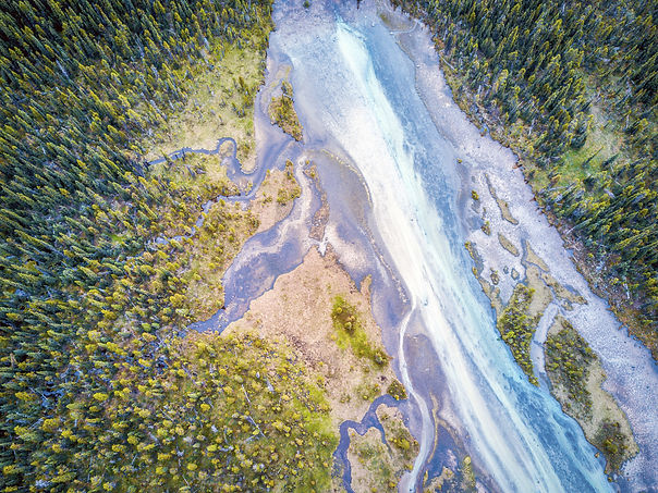 Bow River Tributary_Adobe Stock.jpeg