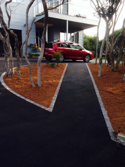 Driveway and footpath