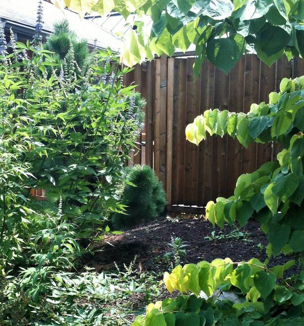 Custom louvered fence