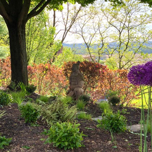 Shade garden, native plants - Ruth Consoli Design
